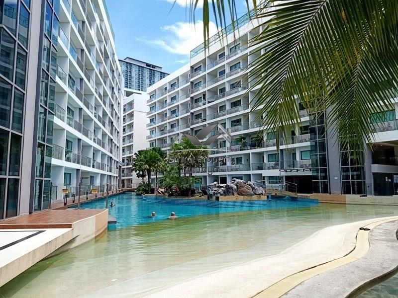 Studio for Sale or Rent in Jomtien. - Condominium -  -